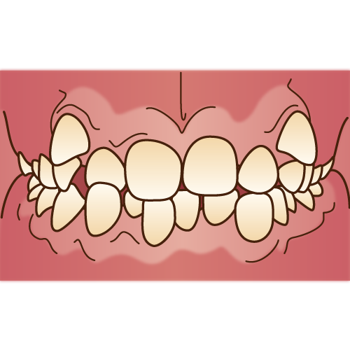 orthodontics033.png